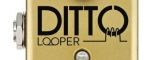 TC Electronic: Ditto Looper Gold