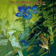 Yes: Fly from Here