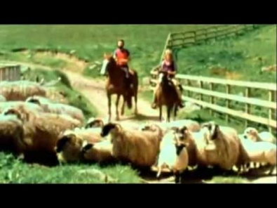 VIDEO: Paul a Linda McCartney - Uncle Albert/Admiral Halsey