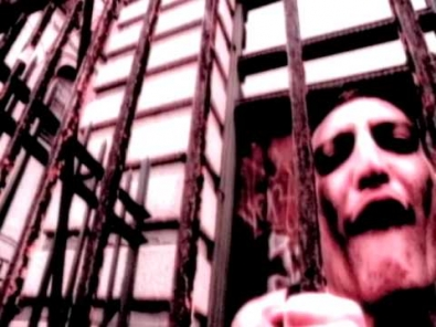 VIDEO: Madball - Down By Law