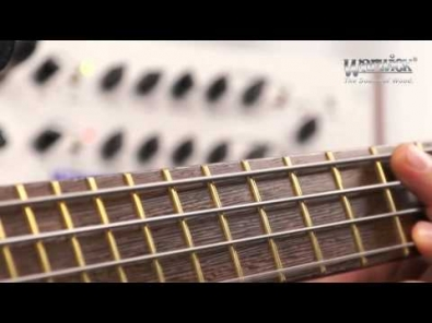 VIDEO: Warwick LWA 1000